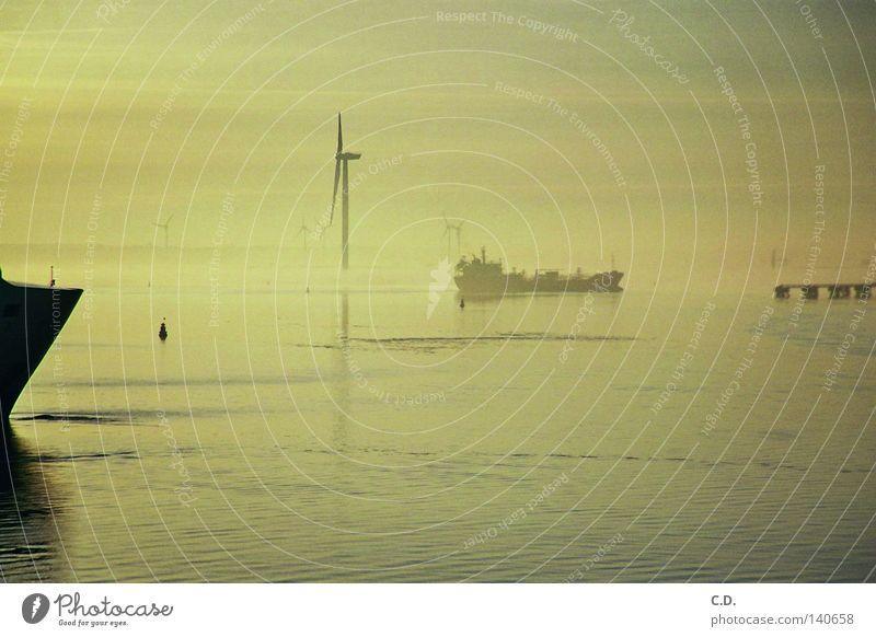 Fähre Wasser Himmel Meer schwarz grau Wasserfahrzeug Nebel Rostock Warnemünde