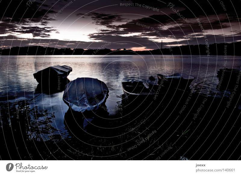 Gut angelegt Natur Wasser Baum Sommer Ferien & Urlaub & Reisen ruhig Einsamkeit dunkel Erholung See Denken Wasserfahrzeug Zufriedenheit Horizont Kitsch Idylle