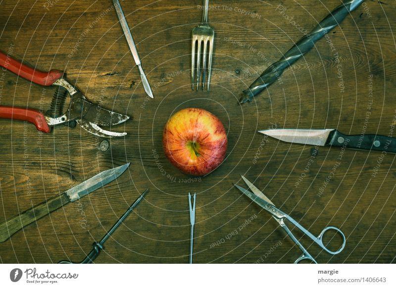 Spießer rot Holz Lebensmittel braun Metall Frucht Ernährung Technik & Technologie rund Beruf Apfel Sammlung Werkzeug Messer Basteln Gartenarbeit