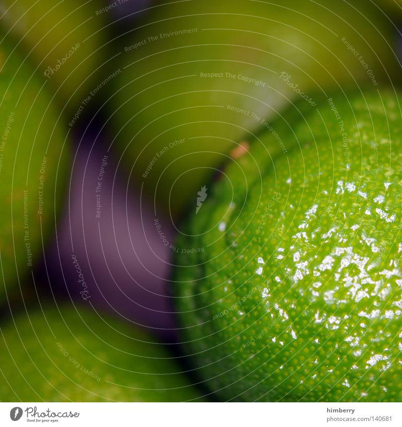 lime time Limone Zitrone sauer Frucht Vitamin Vitamin C Gesundheit Zutaten grün fokussieren Perspektive Ernte Ernährung Lebensmittel Schalen & Schüsseln