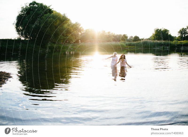 Sommerabend II Natur Wasser Baum Freude Leben Liebe Schwimmen & Baden See Schönes Wetter