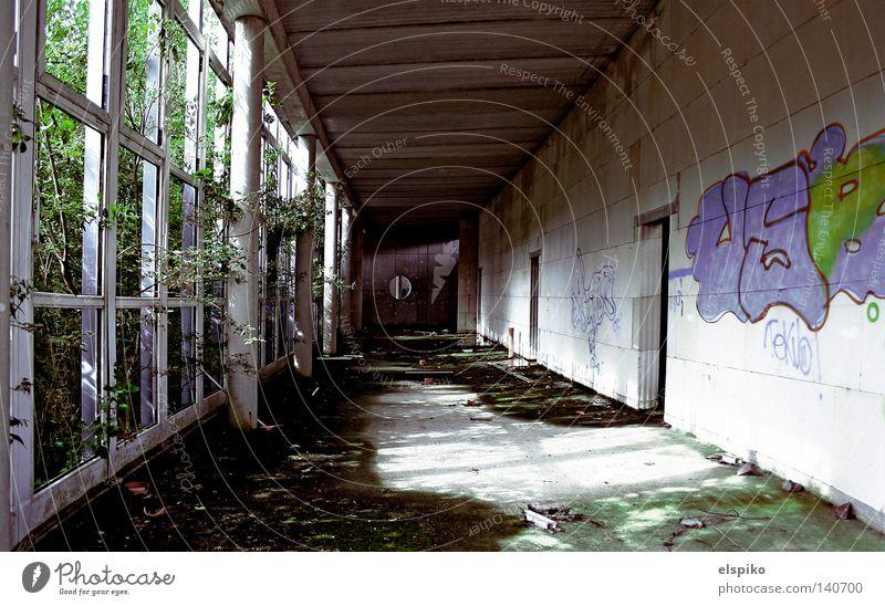 Industrieleichen 2 (Innengang) Einsamkeit Haus Fenster dunkel Tod Graffiti Wand Mauer Gebäude Beton Boden Bodenbelag Baustelle Vergänglichkeit verfallen