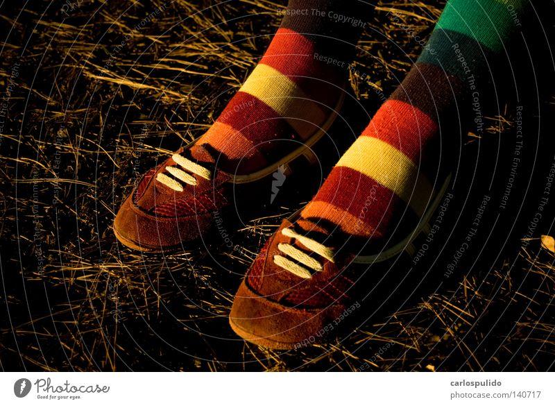 Farbe Fuß Schuhe Dienstleistungsgewerbe Strümpfe alternativ