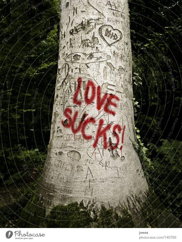 LOVE SUCKS! Baum rot schwarz Einsamkeit Liebe Graffiti Gefühle Traurigkeit braun Herz Schriftzeichen Buchstaben Zeichen Wut Trennung Verzweiflung