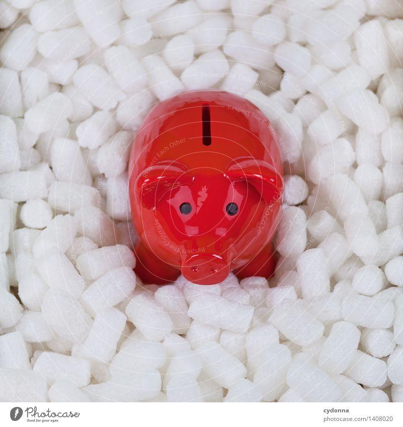 Geldpolster rot Beginn Zukunft Idee kaufen planen Hilfsbereitschaft Schutz Sicherheit Ziel Wunsch Risiko Geldinstitut Wirtschaft Beratung