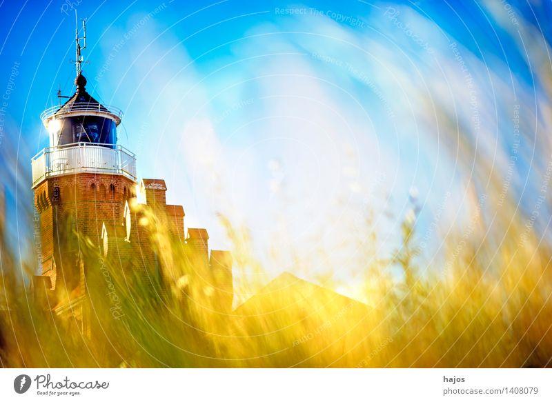 Strandhafer mit altem Leuchturm Ferien & Urlaub & Reisen Ausflug Pflanze Gras Hafen Leuchtturm Sehenswürdigkeit Backstein blau braun gelb Romantik Idylle
