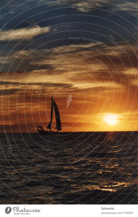 In die Sonne Segeln Wasserfahrzeug Meer Wolken Ferien & Urlaub & Reisen Europa Himmel Insel Abend Sonnenuntergang