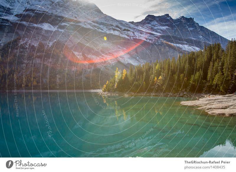 Bergsee Umwelt Natur Landschaft Wasser blau grau grün schwarz türkis weiß bergsee See Reflexion & Spiegelung Oeschinensee Berge u. Gebirge kalt Schnee Schweiz