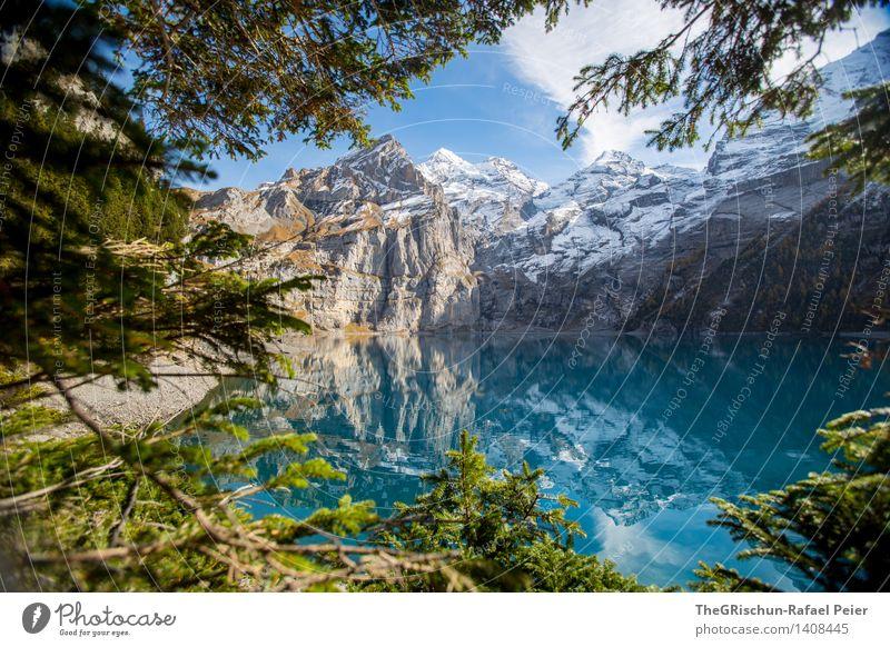 Oeschinesee Umwelt Natur Landschaft Wasser braun grau grün schwarz türkis weiß See Gebirgssee Berge u. Gebirge Alpen Schweiz Oeschinensee Reflexion & Spiegelung