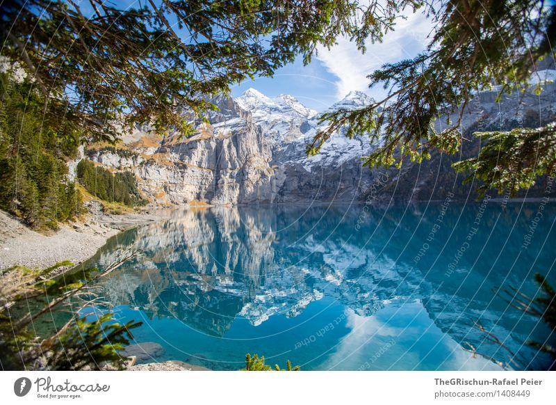 Oeschinesee Natur blau grün schön Wasser weiß Baum Landschaft Wolken Wald schwarz Berge u. Gebirge Umwelt gelb braun wandern