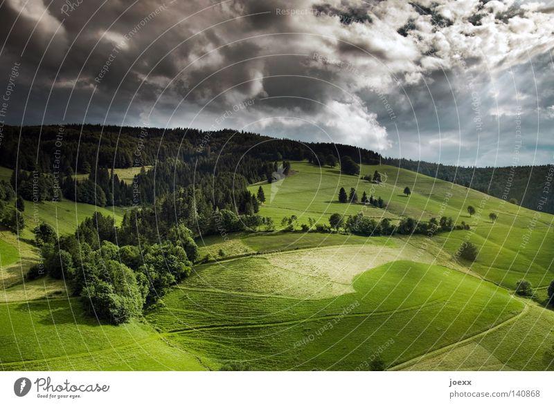 Grün-Donnerstag Sommer Berge u. Gebirge Natur Landschaft Himmel Wolken Wetter Schönes Wetter Baum Wiese Feld Wege & Pfade blau grün schwarz weiß Stimmung Idylle