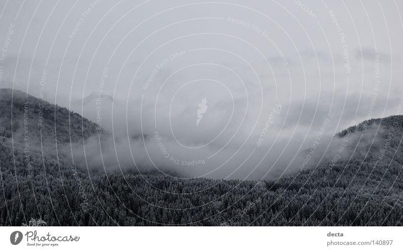 Winterwolken Wolken Schnee grau schwarz Kärnten Schafe weiss