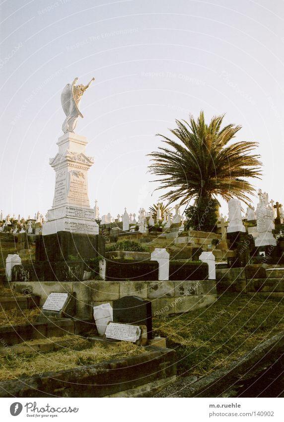 das paradies und der tod Friedhof Gruft Tod Sensenmann verlieren Beerdigung Trauer Angst Ewigkeit Grabstein Engel Vergänglichkeit ästhetisch ruhig Verzweiflung