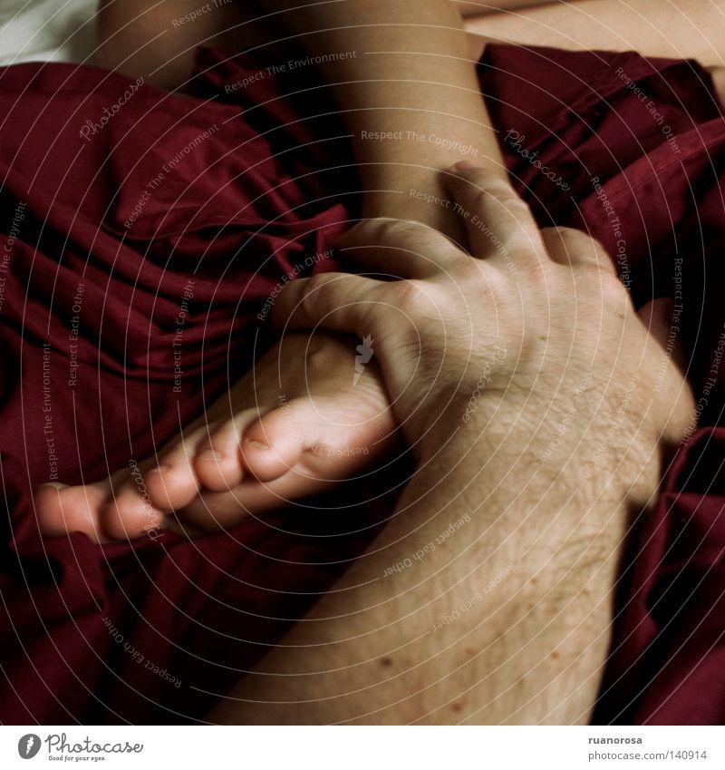 Hand weiß rot Fuß Beine Haut Finger Bett berühren Leidenschaft Handwerk Tastsinn Savanne