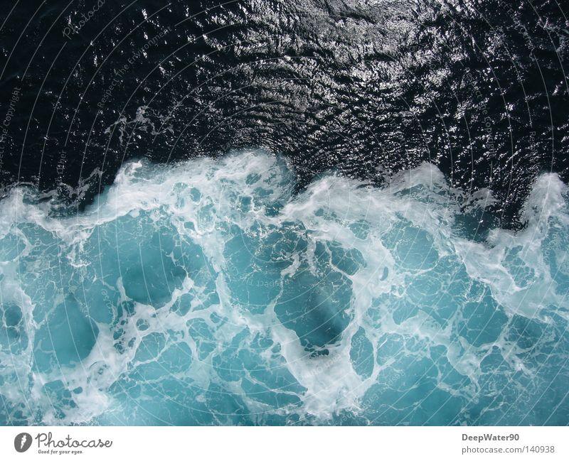 Eiswasser Ferien & Urlaub & Reisen Freiheit Meer Wasser Wärme Wasserfahrzeug fahren glänzend Schaum Aussicht Farbfoto Außenaufnahme Menschenleer