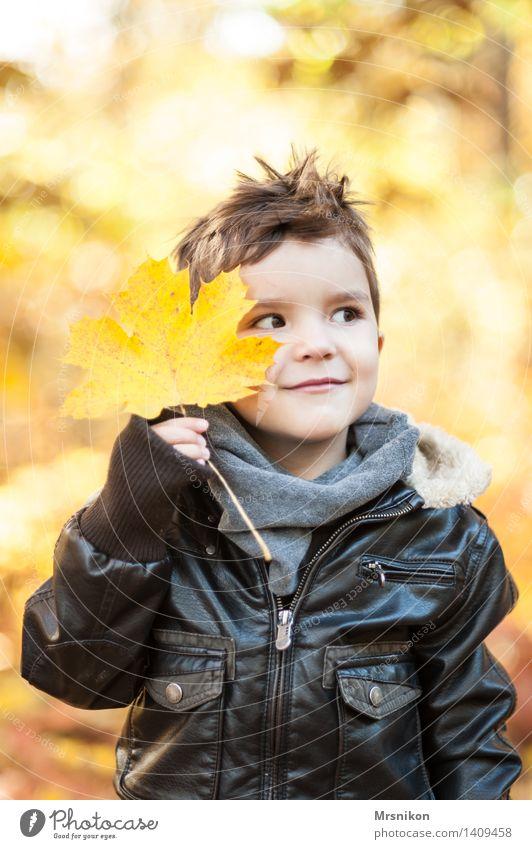 Hier bin ich Kind Kindheit 1 Mensch 3-8 Jahre Lächeln Herbst herbstlich Herbstlaub Herbstwald Lederjacke hübsch schön Blatt zeigen Verschmitzt brünett Farbfoto