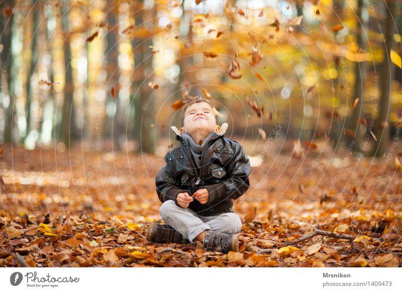 Leise rieseln die Blätter maskulin Kind Junge Kindheit Leben 1 Mensch 3-8 Jahre sitzen Herbst herbstlich Herbstwald Herbstlaub Blatt fallen Lederjacke spaßig