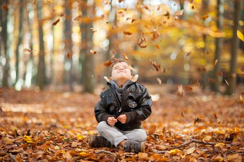 Leise rieseln die Blätter Mensch Kind Blatt Freude Leben Herbst Junge Glück maskulin Kindheit sitzen Lächeln fallen Herbstlaub herbstlich spaßig