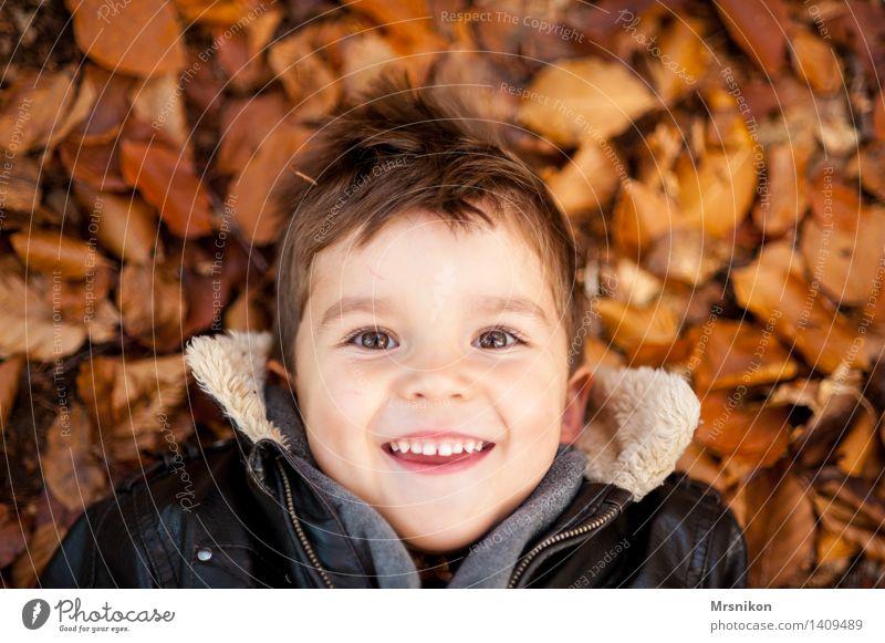 fröhlich Kind Junge Kindheit 1 Mensch 3-8 Jahre leuchten Herbst herbstlich Herbstlaub liegen lachen Fröhlichkeit Blick spaßig Spaßvogel Farbfoto Gedeckte Farben