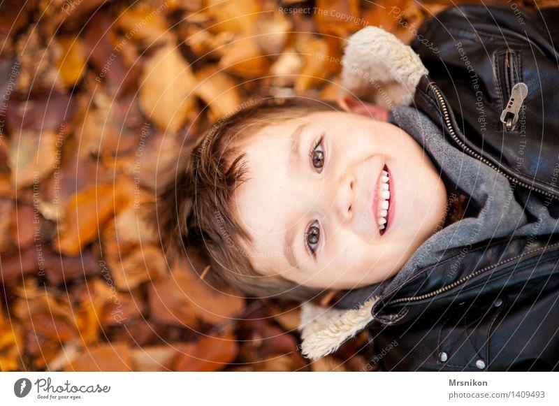 happy day Mensch Kind Kleinkind Junge Kindheit Kopf 1 3-8 Jahre Natur Herbst Wetter Schönes Wetter Blatt Lächeln lachen liegen Lederjacke Herbstlaub aufschauend