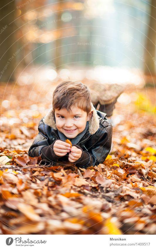 Frohsinn Spielen Kind Kleinkind Junge Kindheit 1 Mensch 3-8 Jahre Leben Freude Glück Lebensfreude Fröhlichkeit herbstlich Herbst Herbstwald Herbstlandschaft