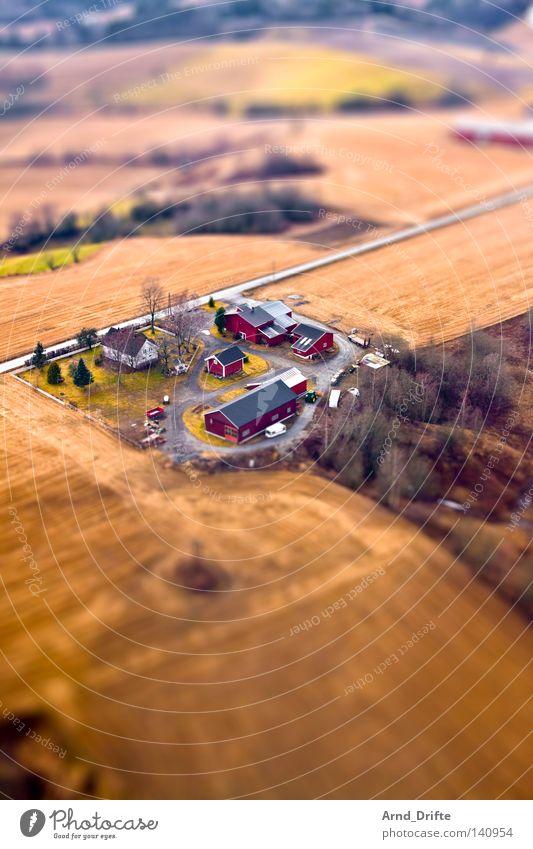 Mini-Bauernhof Baum grün Haus Straße Landschaft braun Feld klein Dorf Landschaftsformen Surrealismus Norwegen Miniatur Modellbau Vogelperspektive Tilt-Shift