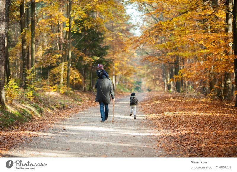 Wanderschaft maskulin Kind Baby Kleinkind Mann Erwachsene Eltern Vater Geschwister Bruder Kindheit Leben 3 Mensch 1-3 Jahre 3-8 Jahre 30-45 Jahre gehen Herbst