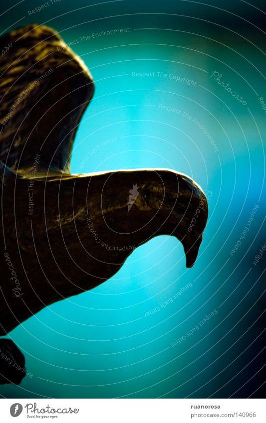 Cooperpeace Taube Metall Kupfer blau Statue Symbole & Metaphern Tier Vogel Erinnerung Gedächtnis Schnabel Eisen Frieden fliegen Hintergrundbild Flügel