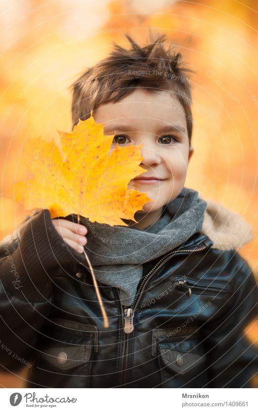happy day Mensch Kind Kleinkind Junge Kindheit 1 3-8 Jahre Natur Herbst Wetter Schönes Wetter Blatt Garten Park Wald Lächeln Herbstlaub Kastanienblatt