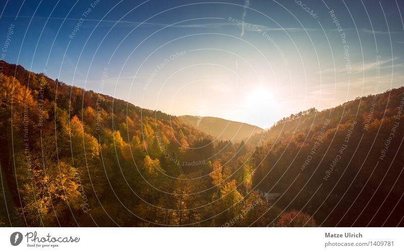 Herbstlandschaft Umwelt Natur Landschaft Himmel Sonne Sonnenaufgang Sonnenuntergang Sonnenlicht Wetter Schönes Wetter Baum landschaftsebenen Landschaftsformen