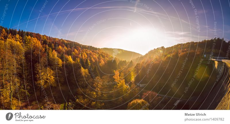 Herbstlandschaft 3 Umwelt Natur Landschaft Sonne Sonnenaufgang Sonnenuntergang Sonnenlicht Wärme Baum Wald Hügel Unendlichkeit Laubbaum Mischwald Blatt Farbfoto