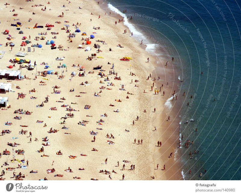 Volksbraterei in Nazaré Mensch Wasser Meer Sommer Strand Küste Sonnenbad Portugal Durst Nazaré Sonnenstand