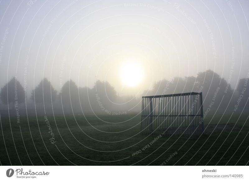 Frühes Tor Baum Sonne Sommer ruhig Nebel Fußball Beginn Verkehrswege Baumkrone Spannung Fußballplatz Weltmeisterschaft bezaubernd Ballsport Sportplatz
