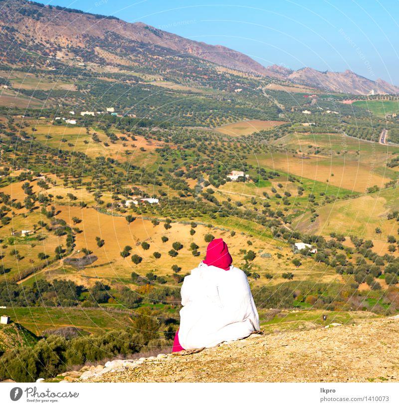 von hoch im Dorf Marokko Ferien & Urlaub & Reisen Stadt Pflanze Baum Landschaft Haus Berge u. Gebirge Straße Architektur Gebäude klein Stein Tourismus Platz