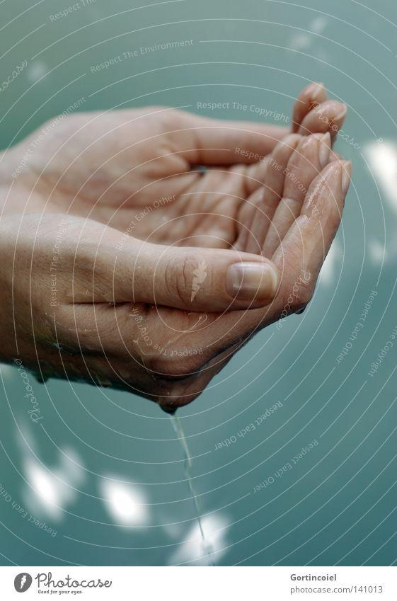 Kostbar Haut Frau Erwachsene Hand Finger Wasser Wassertropfen Tropfen festhalten nass Durst schöpfen Quelle lebenswichtig feucht Kostbarkeit Leben Lichtfleck
