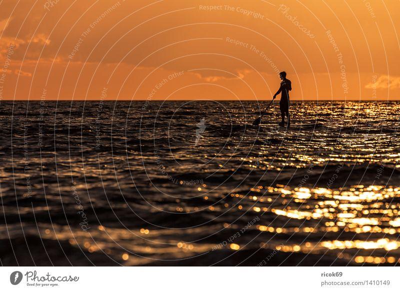 Surfpaddler auf der Ostsee Natur Ferien & Urlaub & Reisen Wasser Erholung Meer Wolken Freude Sport Freizeit & Hobby Fitness Abenteuer Abenddämmerung Surfen