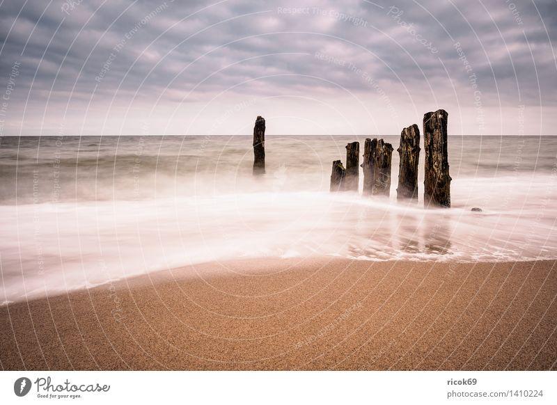 Abends an der Küste der Ostsee Erholung Ferien & Urlaub & Reisen Strand Meer Natur Landschaft Wasser Wolken Holz Romantik Idylle Tourismus Buhnen Kühlungsborn