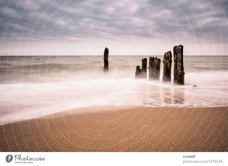 Abends an der Küste der Ostsee Natur Ferien & Urlaub & Reisen Wasser Erholung Meer Landschaft Wolken Strand Holz Tourismus Idylle Romantik