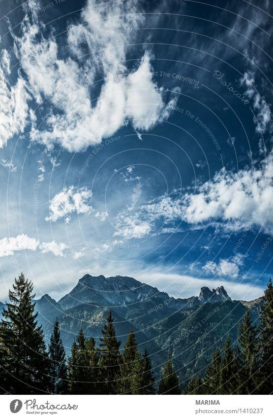 Autumn day in the Allgäu ruhig Ferien & Urlaub & Reisen Sonne Berge u. Gebirge wandern Umwelt Natur Landschaft Pflanze Wolken Herbst Wald Hügel Felsen Alpen