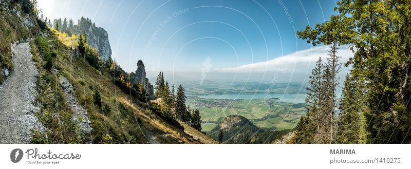 Autumn day in the Allgäu ruhig Ferien & Urlaub & Reisen Sonne Berge u. Gebirge wandern Umwelt Natur Landschaft Pflanze Herbst Nebel Baum Wald Hügel Felsen Alpen