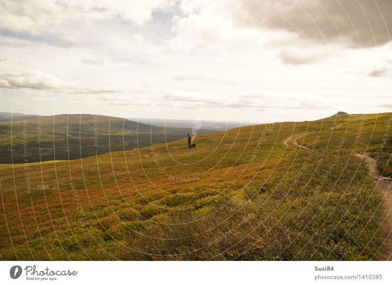 Schwedische Weite Mensch maskulin 1 Natur Landschaft Pflanze Wolken Sträucher Moos Wildpflanze Blaubeeren Moltebeeren Hügel Tundra Hund natürlich Einsamkeit