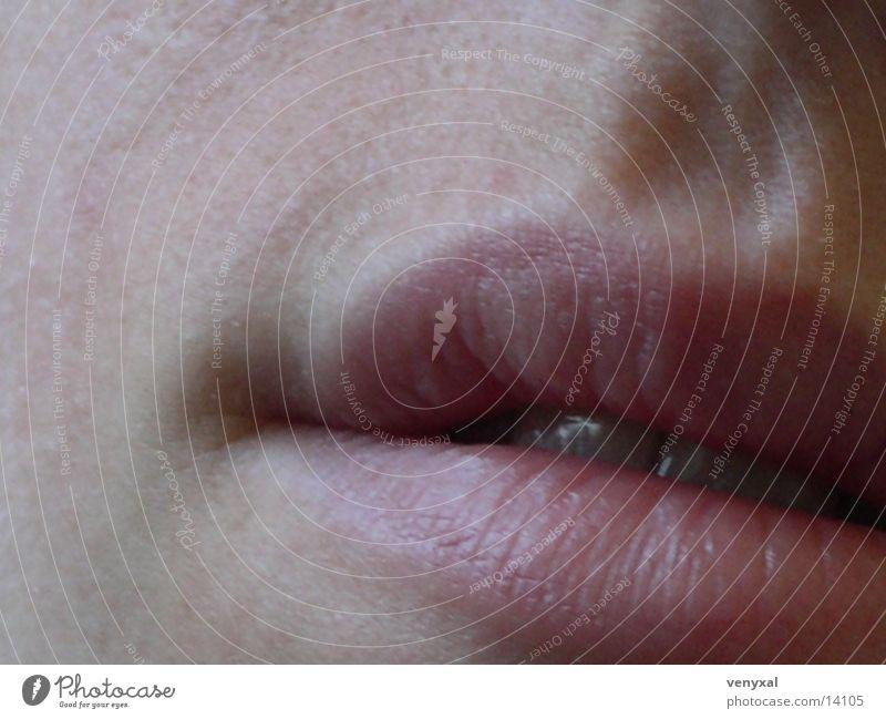 Mund Lippen Mensch