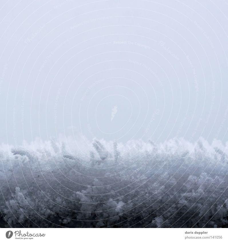 eisgrau Schnee Schneekristall Winter Quadrat abstrakt Eis kalt Schneedecke Himmel Makroaufnahme Nahaufnahme stahlgrau bläulich Haarschnitt querschnitt