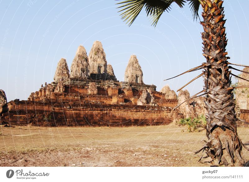 Tempel Pre Rup Kunst Turm Asien Urwald Palme heilig Abenddämmerung Tempel Buddha Kunsthandwerk Gotteshäuser Buddhismus Abendsonne Hinduismus Kambodscha Angkor Wat