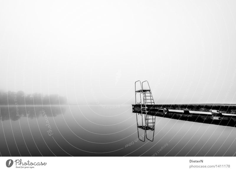 Still ruht der See Landschaft Wasser Herbst Nebel Seeufer grau schwarz weiß Steg Sprungbrett Baum Schwimmbad Schwarzweißfoto Außenaufnahme Menschenleer