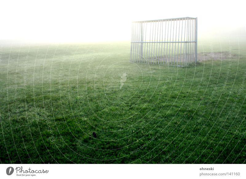 Frühes Ausgleichstor ruhig Spielen Schnee Sport Ballsport Fußball Wassertropfen Nebel hell Hoffnung Einsamkeit Tor gleißend Tau Erkenntnis leer