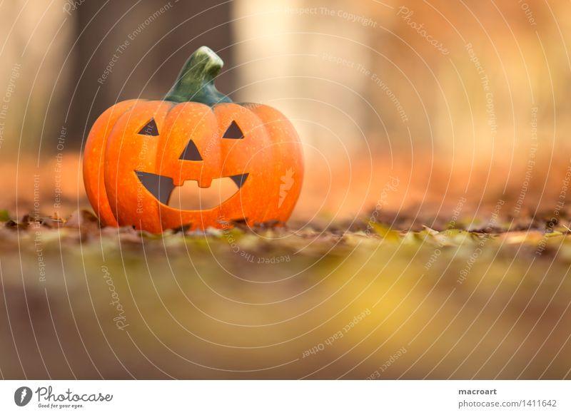 happy halloween Kürbis Halloween jack o lantern Herbst Herbstlaub orange gelb Jahreszeiten Gesicht Grimasse lachen Lächeln Gemüse Natur natürlich Blatt