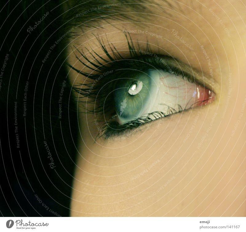 Augenaufschlag Gefäße nah Pupille schwarz dunkel Lampe Reflexion & Spiegelung rund Nahaufnahme Makroaufnahme Kontaktlinse grün Wimpern Kajal Wimperntusche