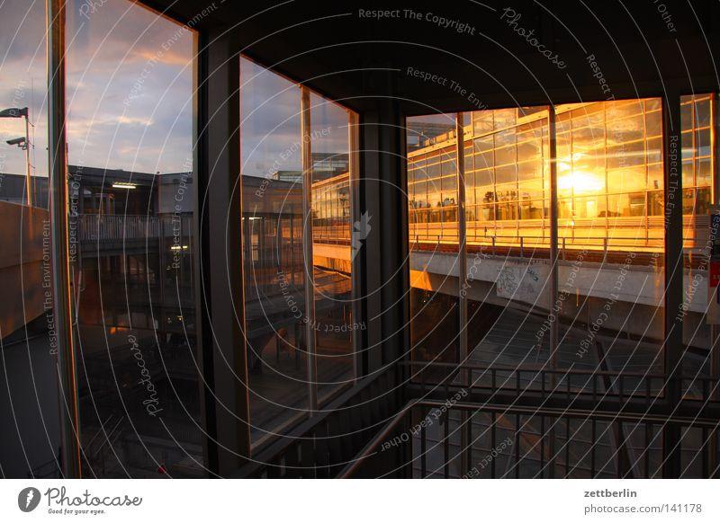 Lieblingsbauwerk Haus Gewächshaus Baustelle Bauwerk Fassade Glasfassade Sonne Abendsonne Reflexion & Spiegelung Fenster Fensterrahmen Neubau Architektur Berlin