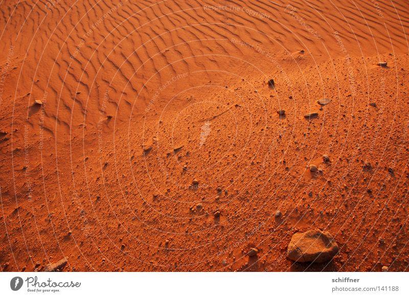 Sandküste Wüste beige Sandbank Erde Wellen Dürre Sturm Wind Sandverwehung Gras Grasbüschel Spuren Sonnenuntergang trocken unfruchtbar verbrannt wehen Jordanien
